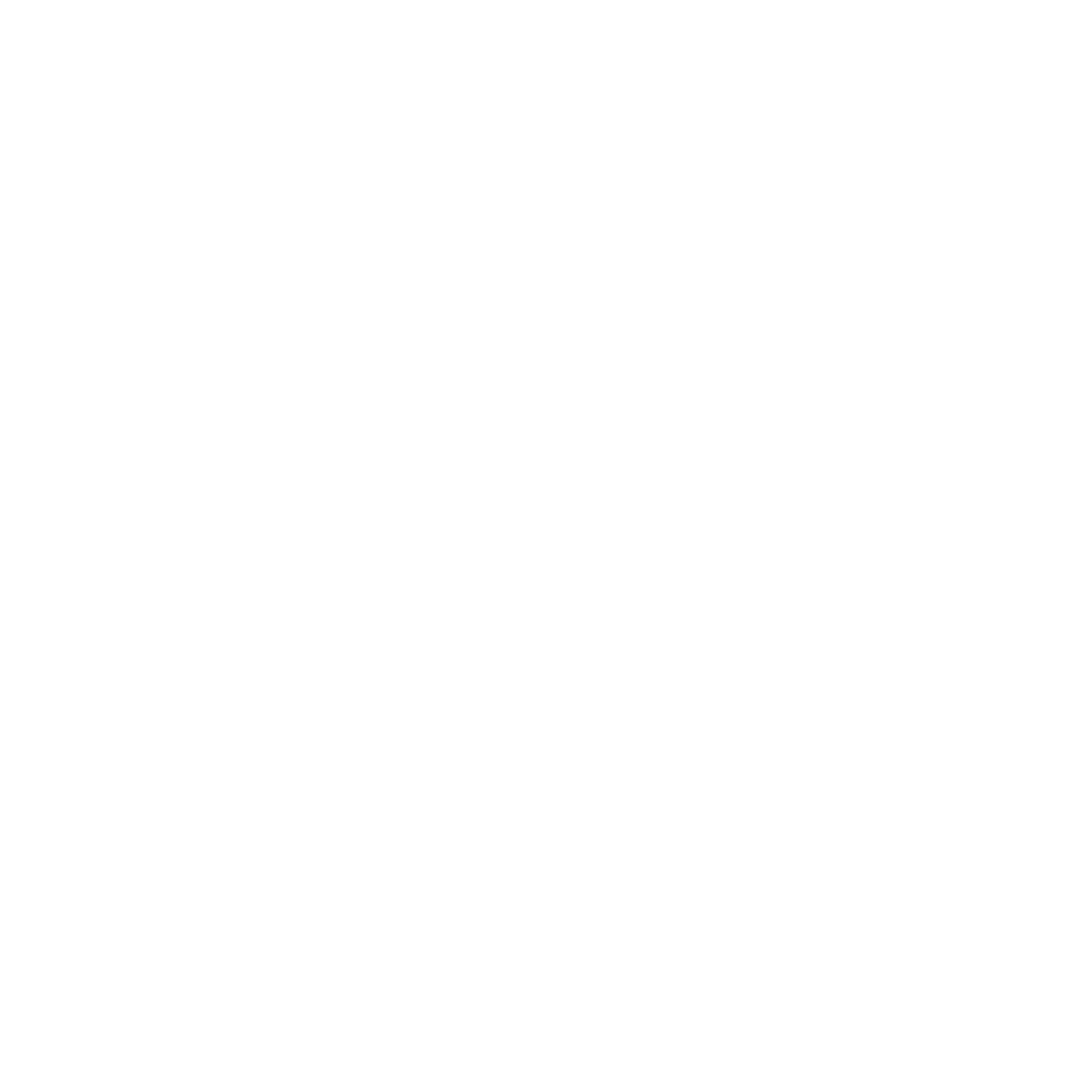 Smith & Co White Logo