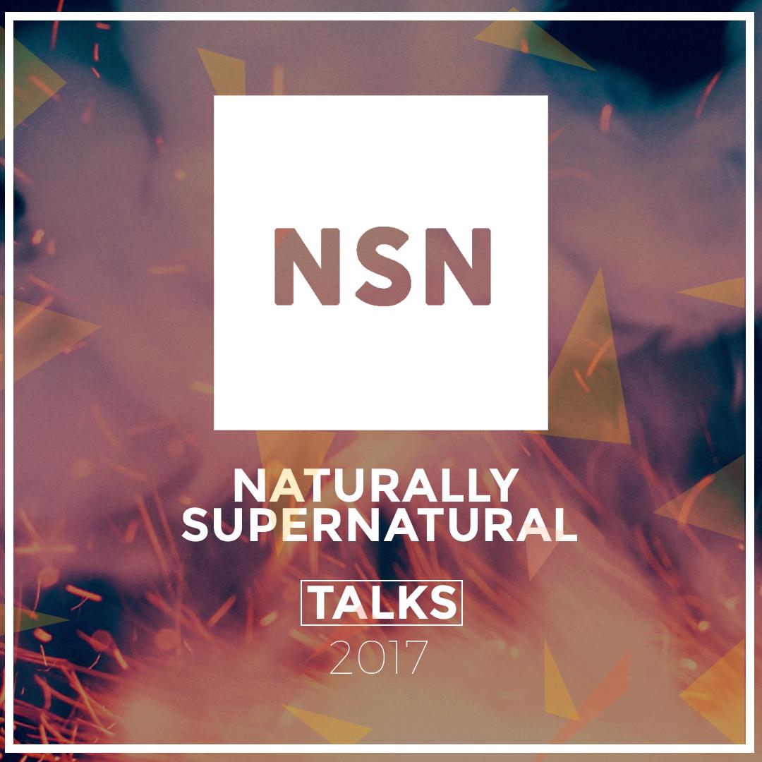 NSN-Album-Artwork_2017.png