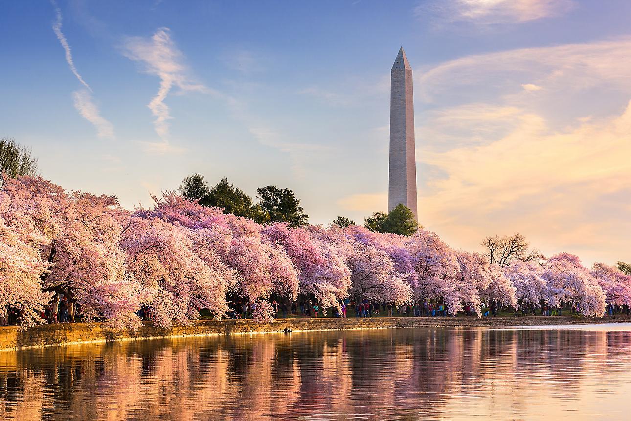 dmo-Washington-DC-Essential-guide-00-Hero-Washington-DC-GettyImages-627202312.jpeg