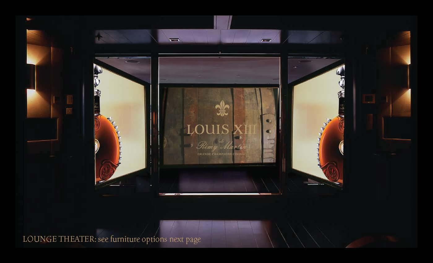Louis_LookFeel_v7_Page_09.jpg