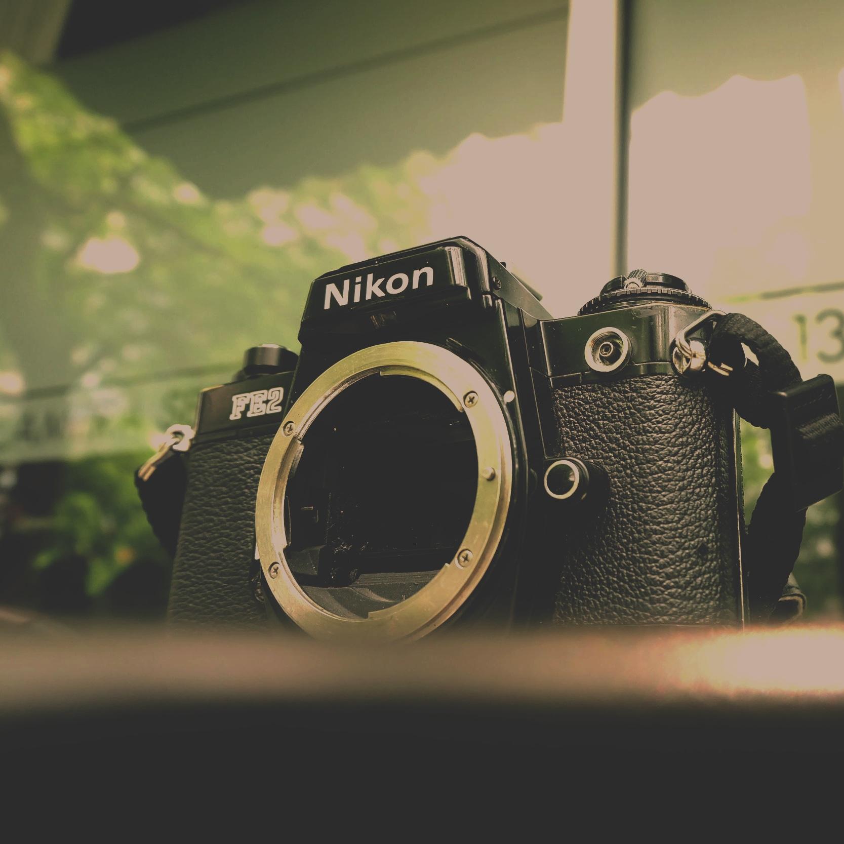 Nikon camera unedited.JPG