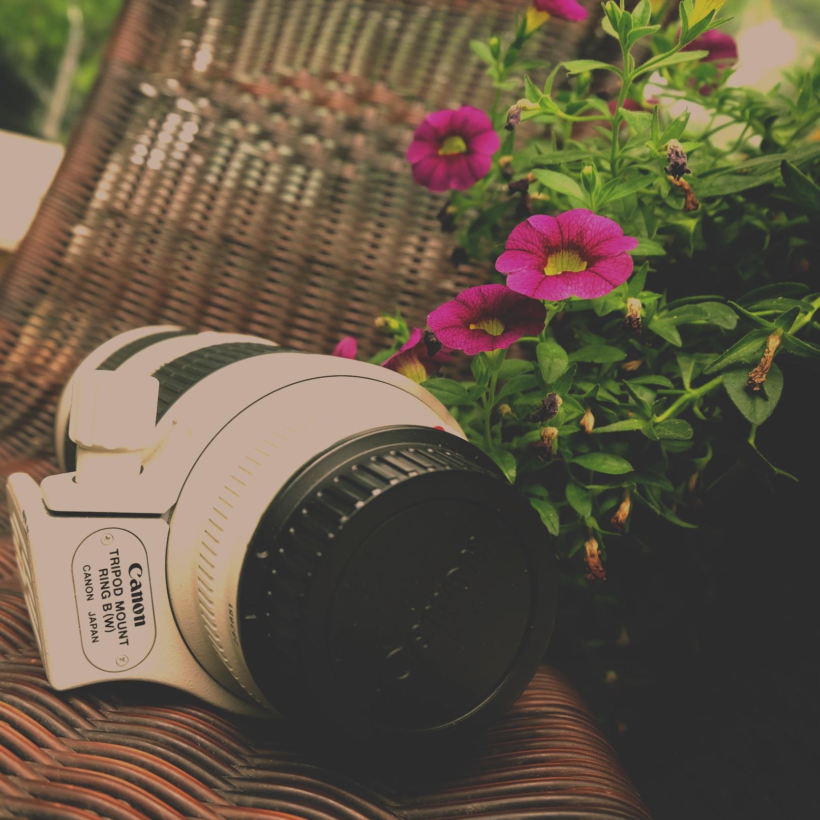 Canon Lens unedited.JPG