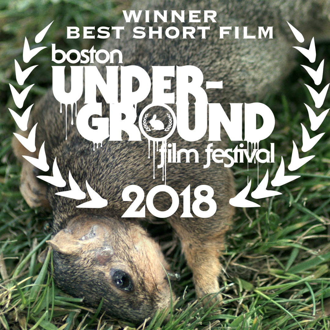 """Holy Calzone! My short   END TIMES   has won  """"Best Short film"""" at the Boston Underground film fest ! Thank you, Boston! And thanks to everyone who helped kickstart this film! ❤️❤️❤️"""