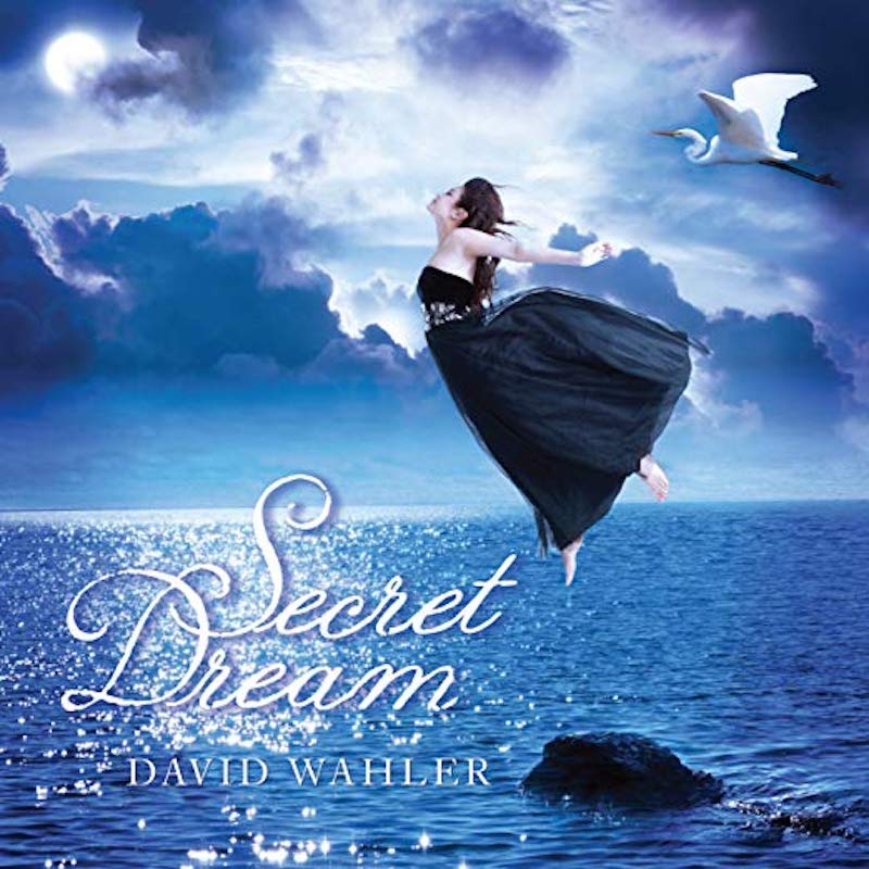 Secret Dream - What is the difference between a dream and reality? And if we could choose our dreams, wouldn't they be filled with hope, love and freedom? In this collection of music, I have selected those songs which deeply express my Secret Dream of harmony, happiness and peace.Buy Album:iTunesAmazon