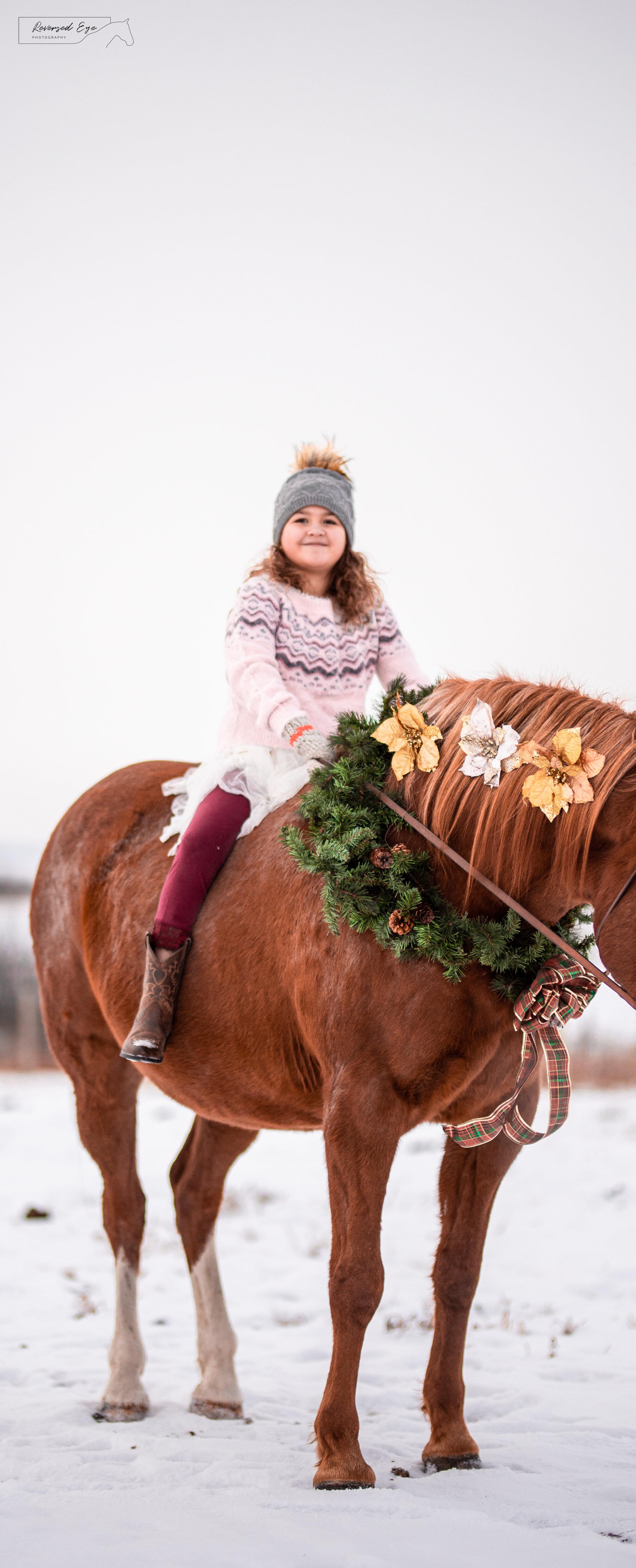 Ponies Reversed Eye Photography Edmonton Equine Photographer Blog Of The Edmonton Equine Photographer