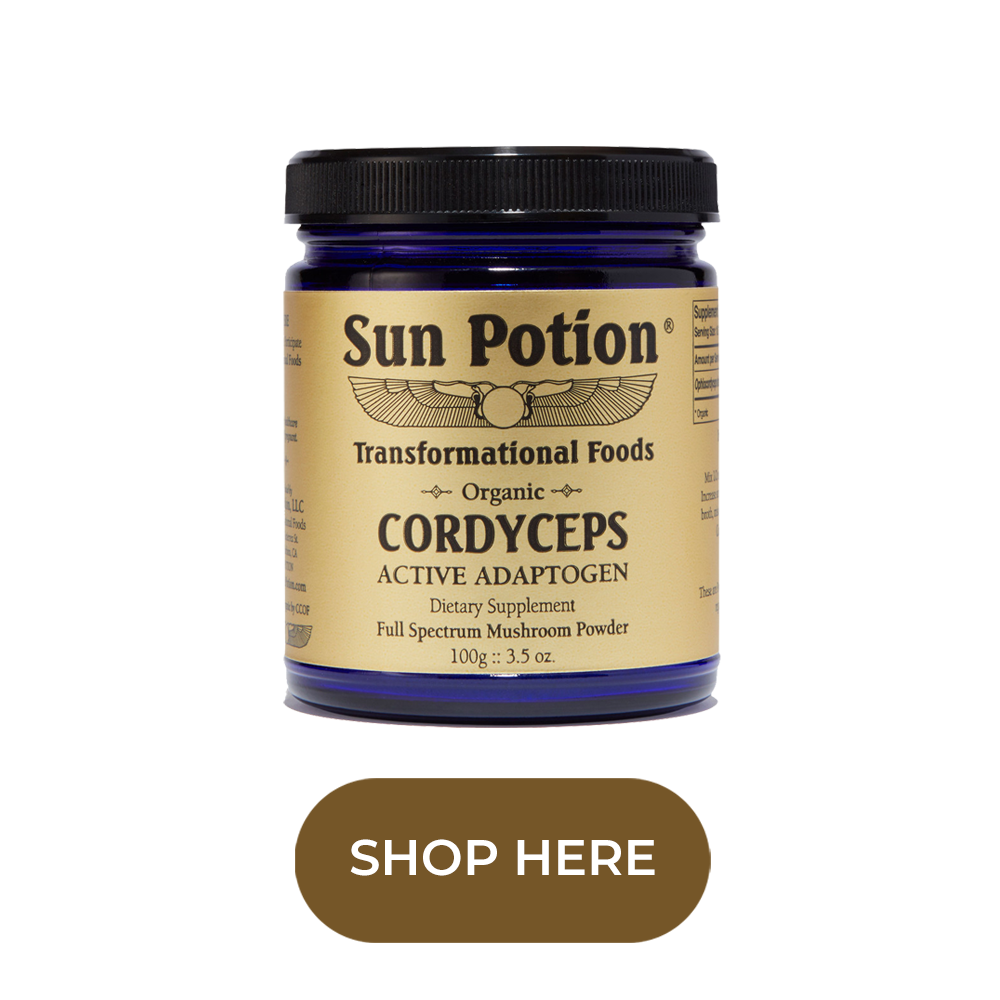 Sun Potion Cordyceps Knotably Creative House.png