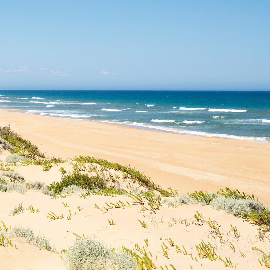 ninety-mile-beach_gip_r_146263_1150x863.jpg