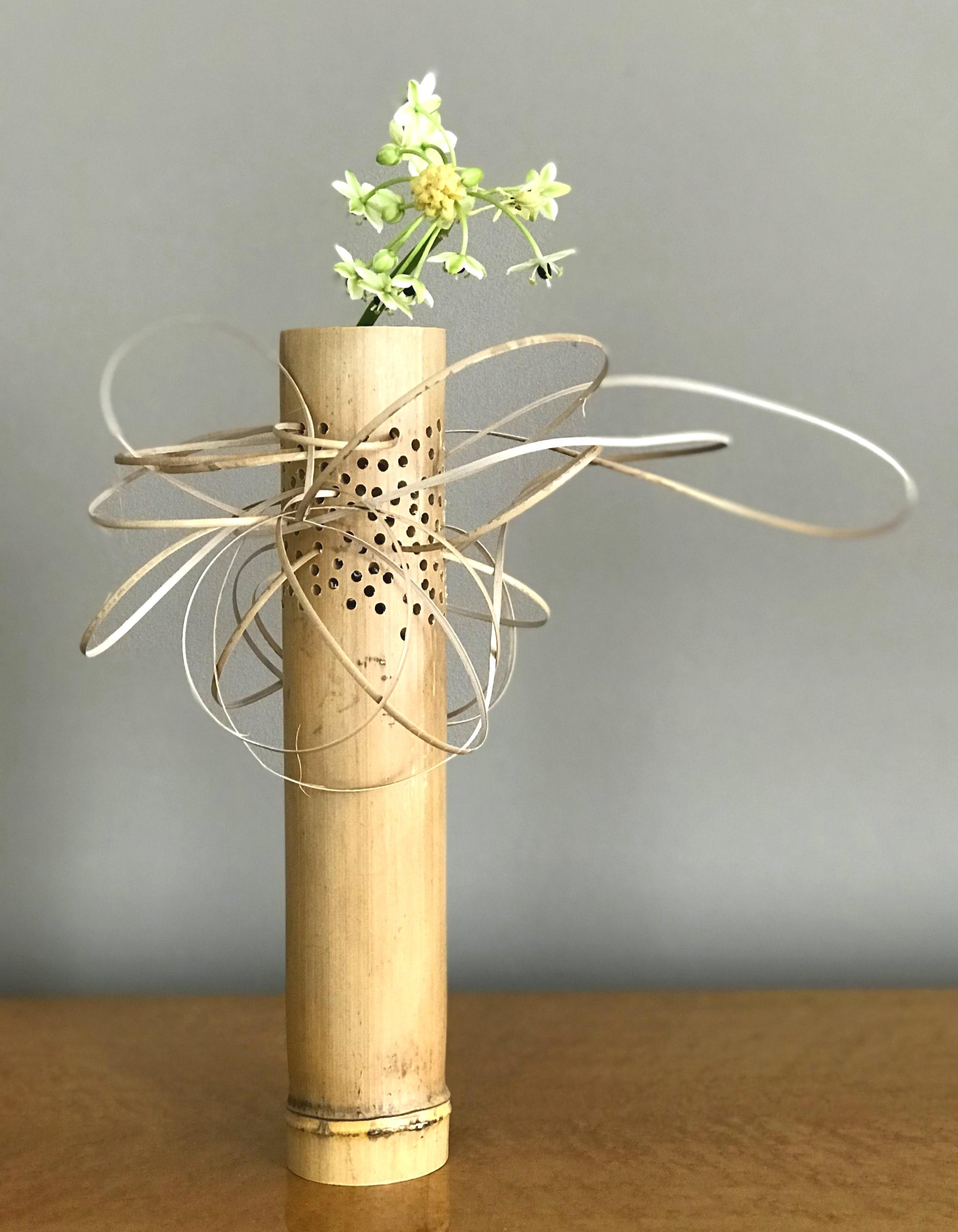dikke bamboe met stroken rotan en Zuiderwindlelie