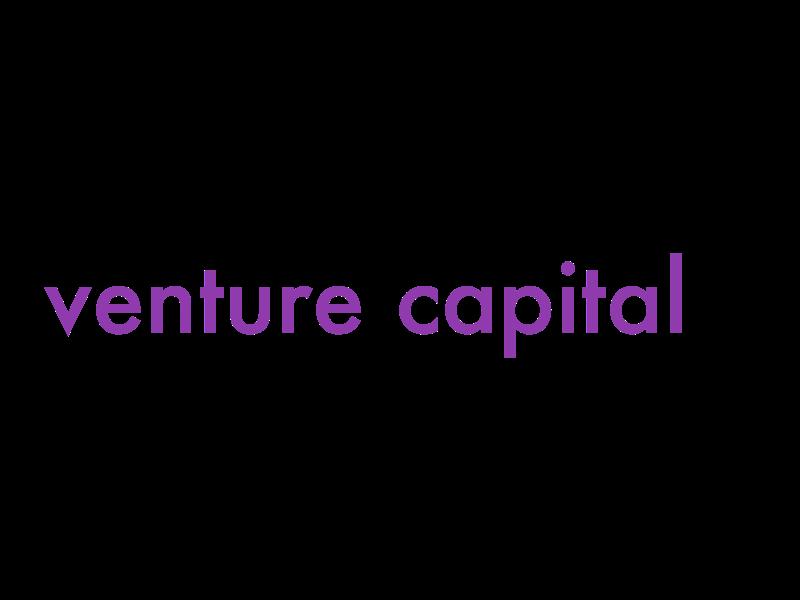 venture capital2.png