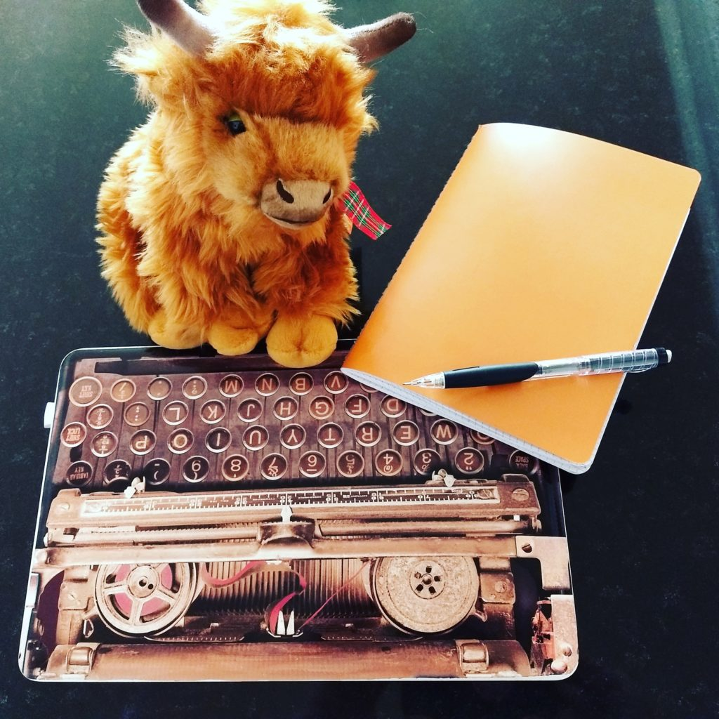 Dori the gargoyle didn't hide out in my bag on this trip, but Hamish the Highland Cow (COO) followed me home one day, and was a great writing helper.
