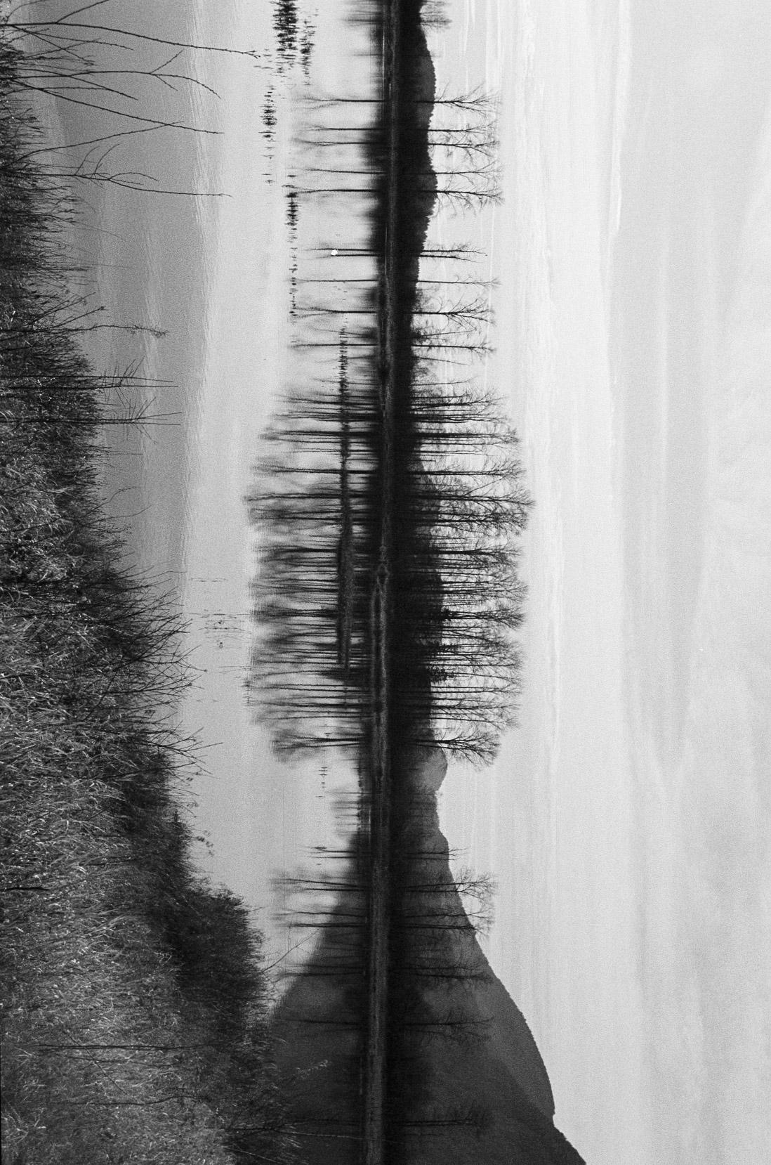 vancouver photography Michele Bygodt 26