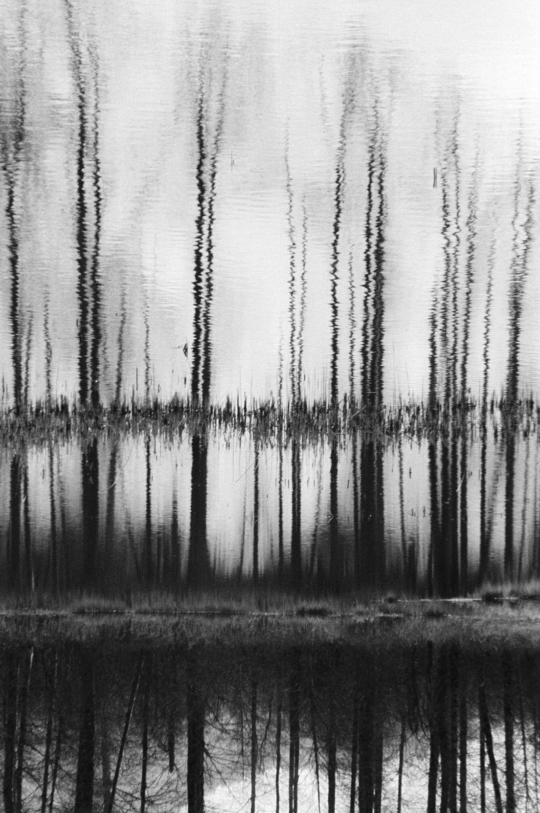 vancouver photography Michele Bygodt 28