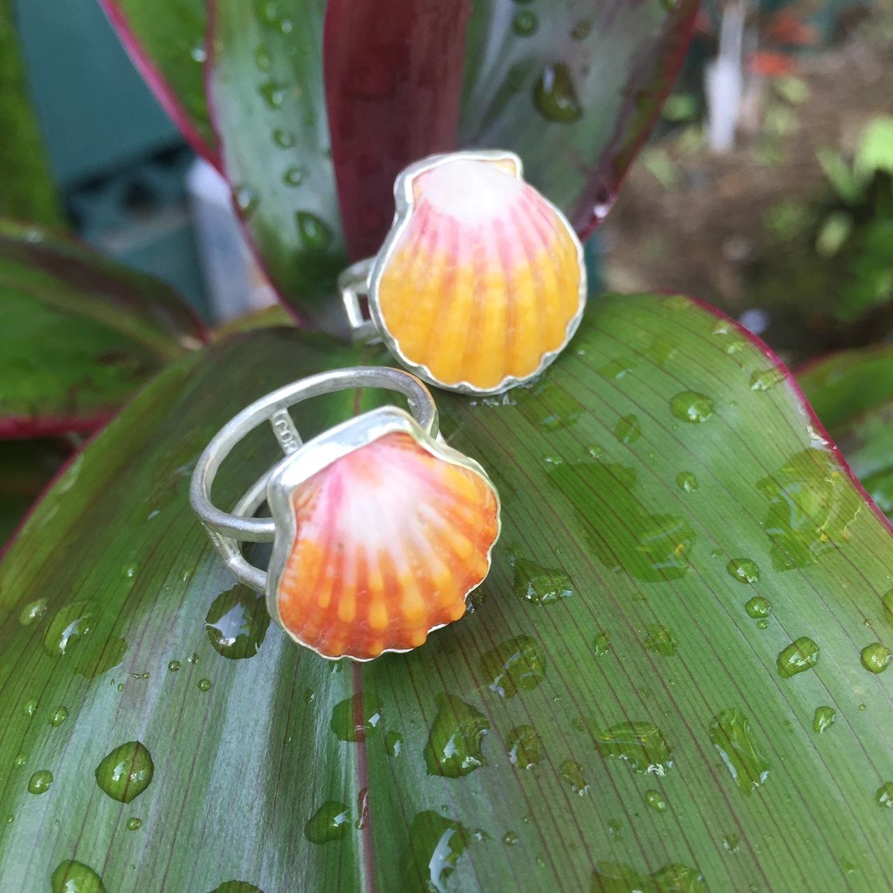 sunrise shell rings $210.00