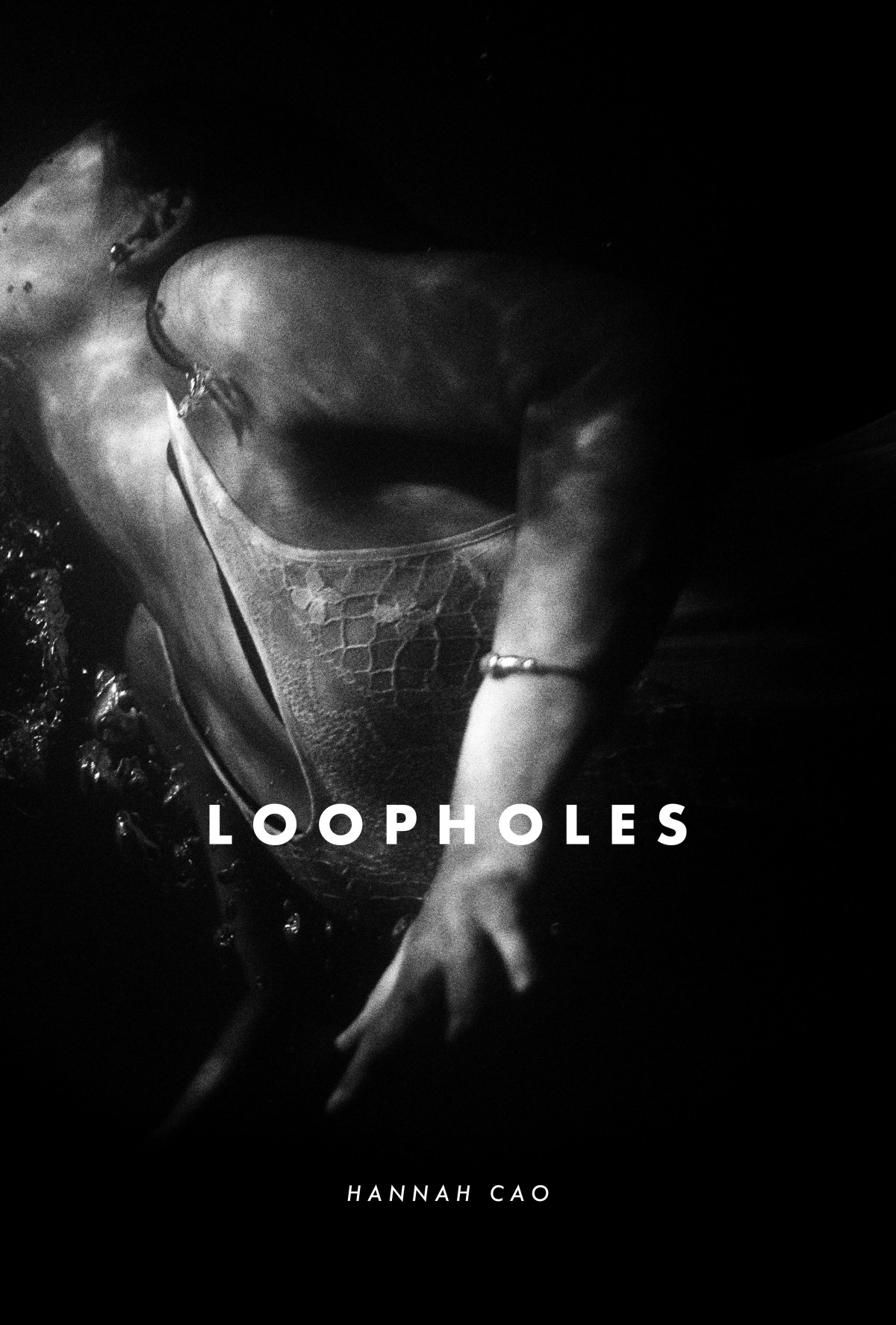 loopholes-cover.jpg