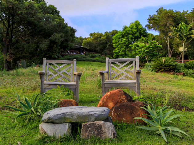 web-size-Wisdom-and-Compassion-chairs-0357.jpg