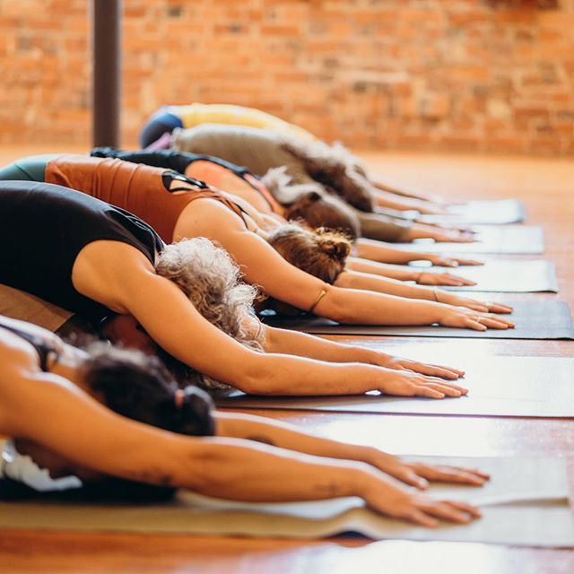 We are so excited to announce that we are offering Beginners Yoga courses at Tula again! . . Nurture your well-being in this friendly, supportive Beginners Yoga Course set over 2 consecutive Sundays, 21st and 29th of July 🌱 . This course is great if you are brand new to yoga, or have been practising yoga already for a while and want to gain a more in depth understanding of Yoga + connect more authentically with your practice.  It is also great for anyone simply wanting to refresh their knowledge of the main principles of yoga after a time away  Together we will learn -The basic sequences of Hatha/Vinyasa Yoga -Key postures and their alignment -Breathing exercises -How to be an empowered student in a studio community/setting -The key components of yoga as a holistic system for health & wellbeing + how to bring yogic principles into your everyday life  Following these two weeks you will have a safe, strong base to explore other styles of yoga at Tula, as well as have the tools to start to design a home practice that suits your own needs/schedule  Course Dates + Times 21 July 12-5pm  28 July 9am-1pm  Your Teachers: Lisa Ambrose & Saskia Seeling  More info about this course at: tinyurl.com/tulabeginners
