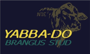yabba do logo.png