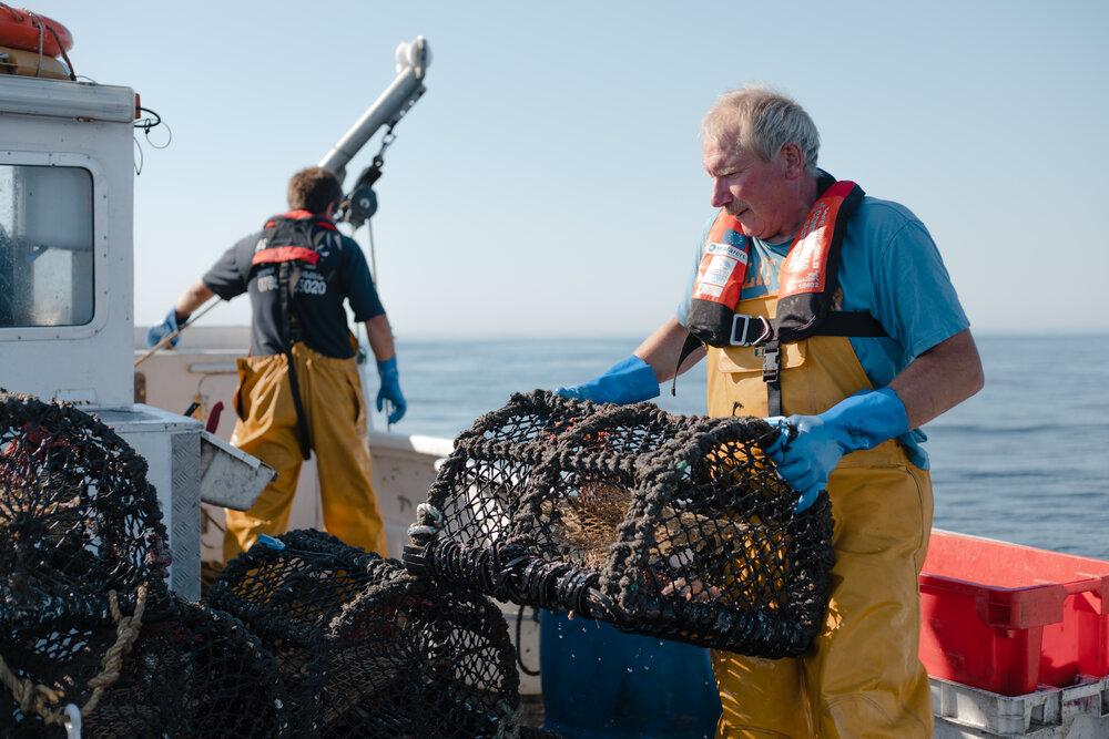 filmmaking-cornwall-fisheries