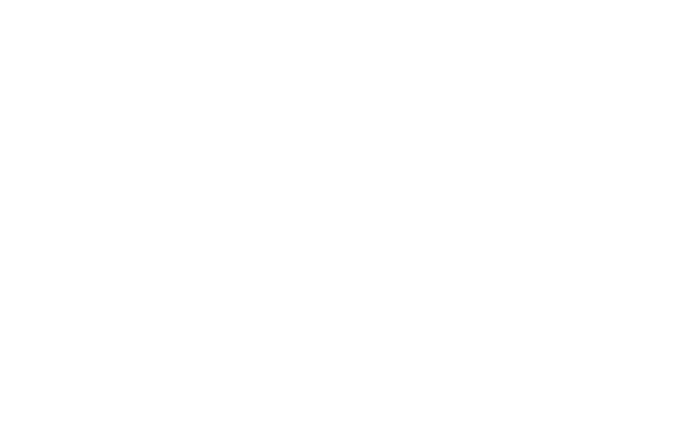 SDI Logo White.png