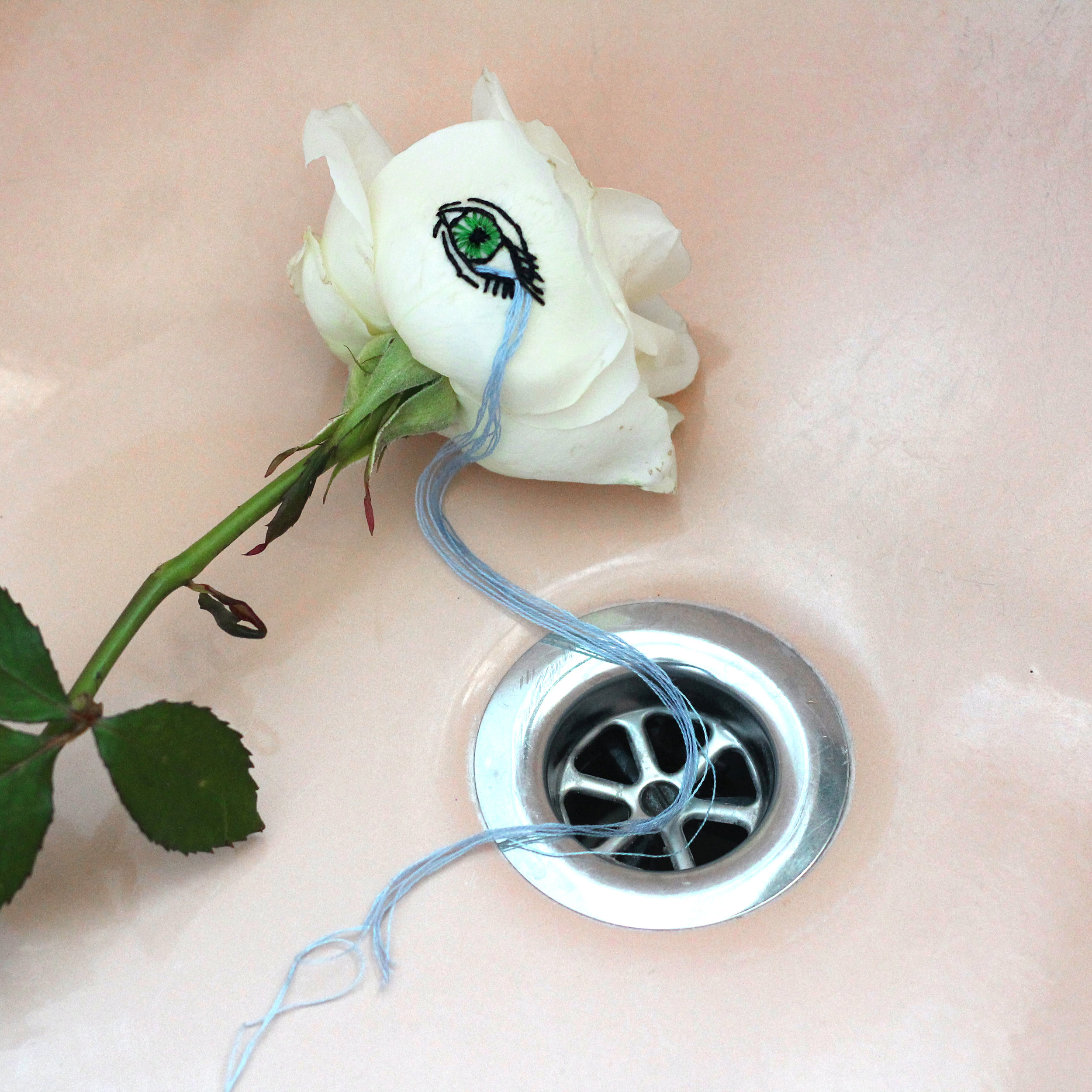 """embroidered """"crying eye"""" real rose in bath, 2019"""
