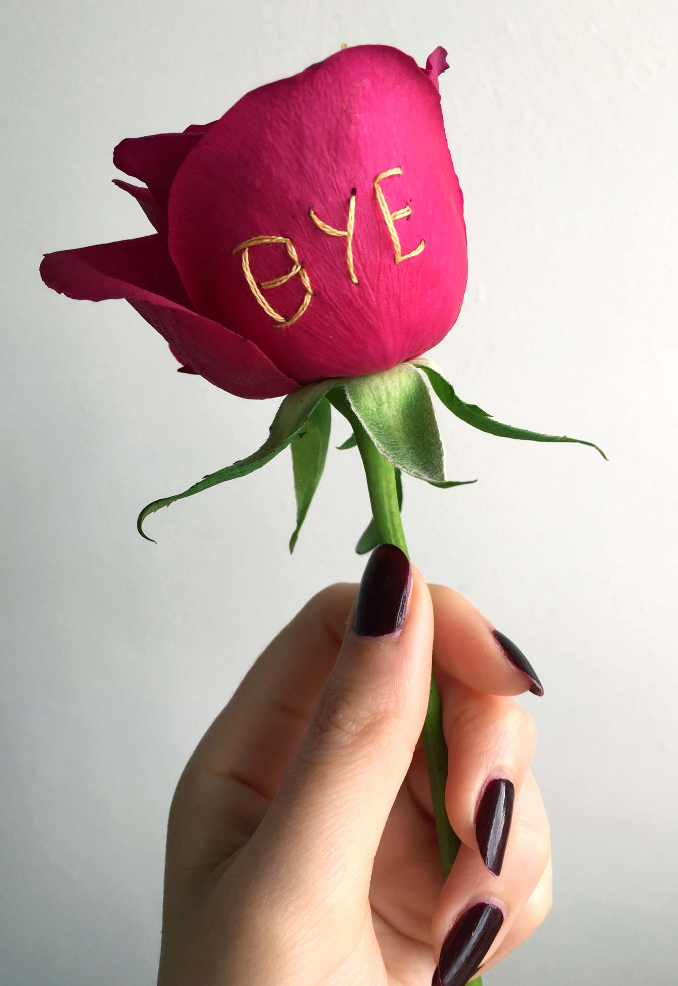 "embroidered ""bye"" real rose, 2017, Sophie King"