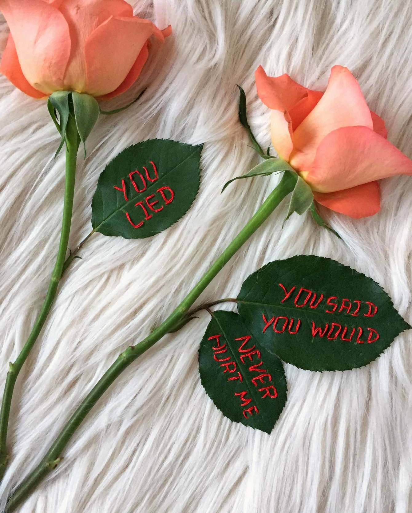 "embroidered ""you lied, you said you'd never hurt me"" on real roses, 2017, Sophie King"