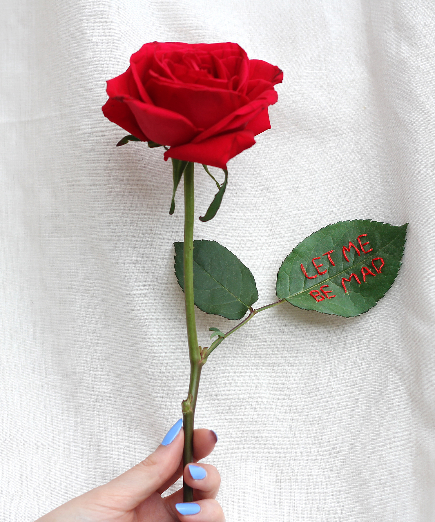 """embroidered real rose """"let me be mad"""" by Sophie King"""