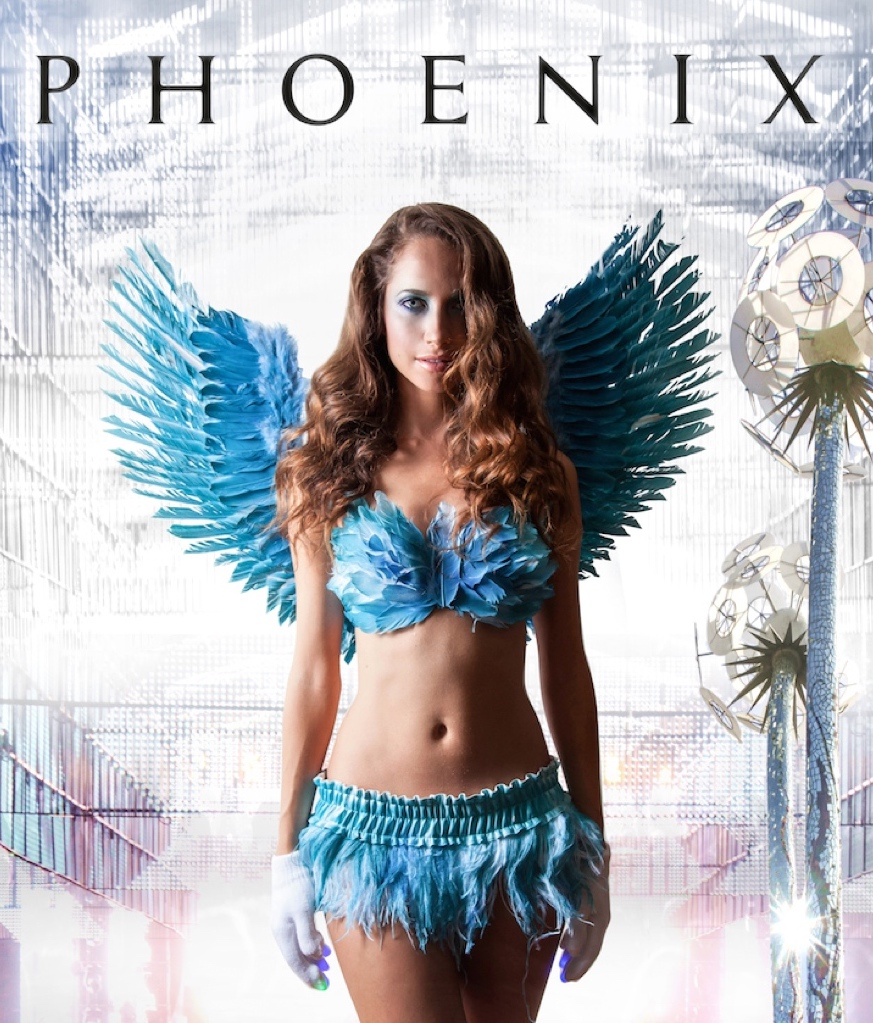 Phoenix is about a lonely young woman who struggles between reality and fantasy to escape a hard truth. She befriends a group of colorful misfits who take her down the rabbit hole of drugs, sex, art, and deadly misunderstanding.