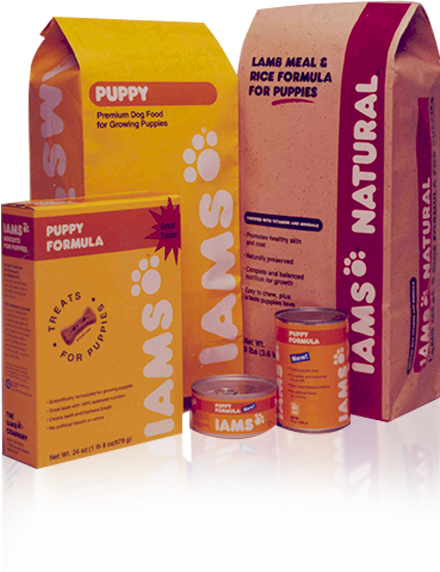 Logo and Branding Creation - Recognize the Iams puppy paw logo? That was us. We created this logo for Paul Iams in the 1990s and it is still used to this day. We help companies develop iconic, meaningful brands that stand the test of time.