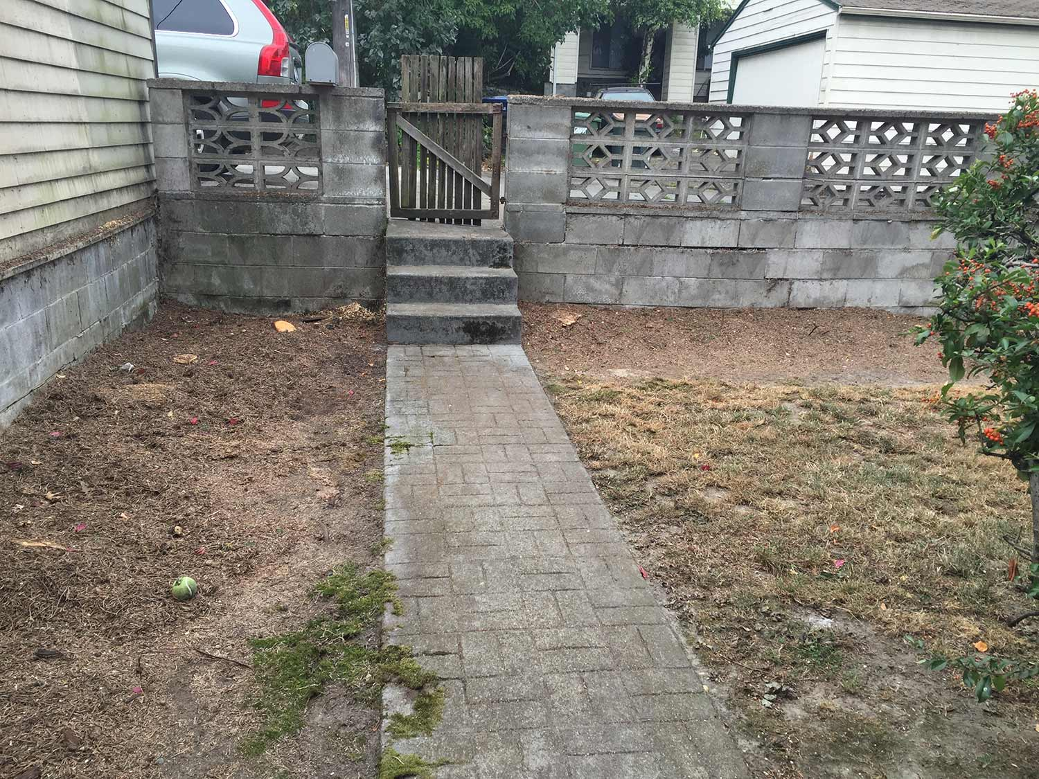 BEFORE:  NARROW ENTRY PATH WITH STEEP STEPS