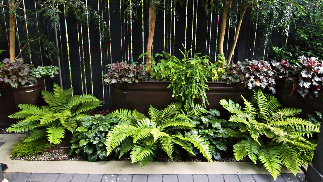 PAINTED HORSE TROUGHS REINFORCE THEME AND BRINGS PLANTS UP HIGH FOR SCREENING