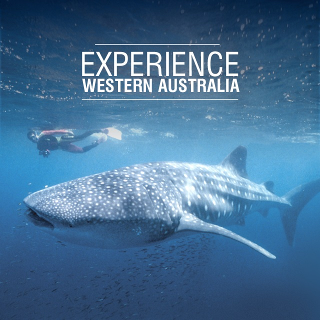 Oct 2011 - Working with HOST, Adapptor launches Experience WA for Tourism Western Australia. App features offline maps to help tourists roam free.