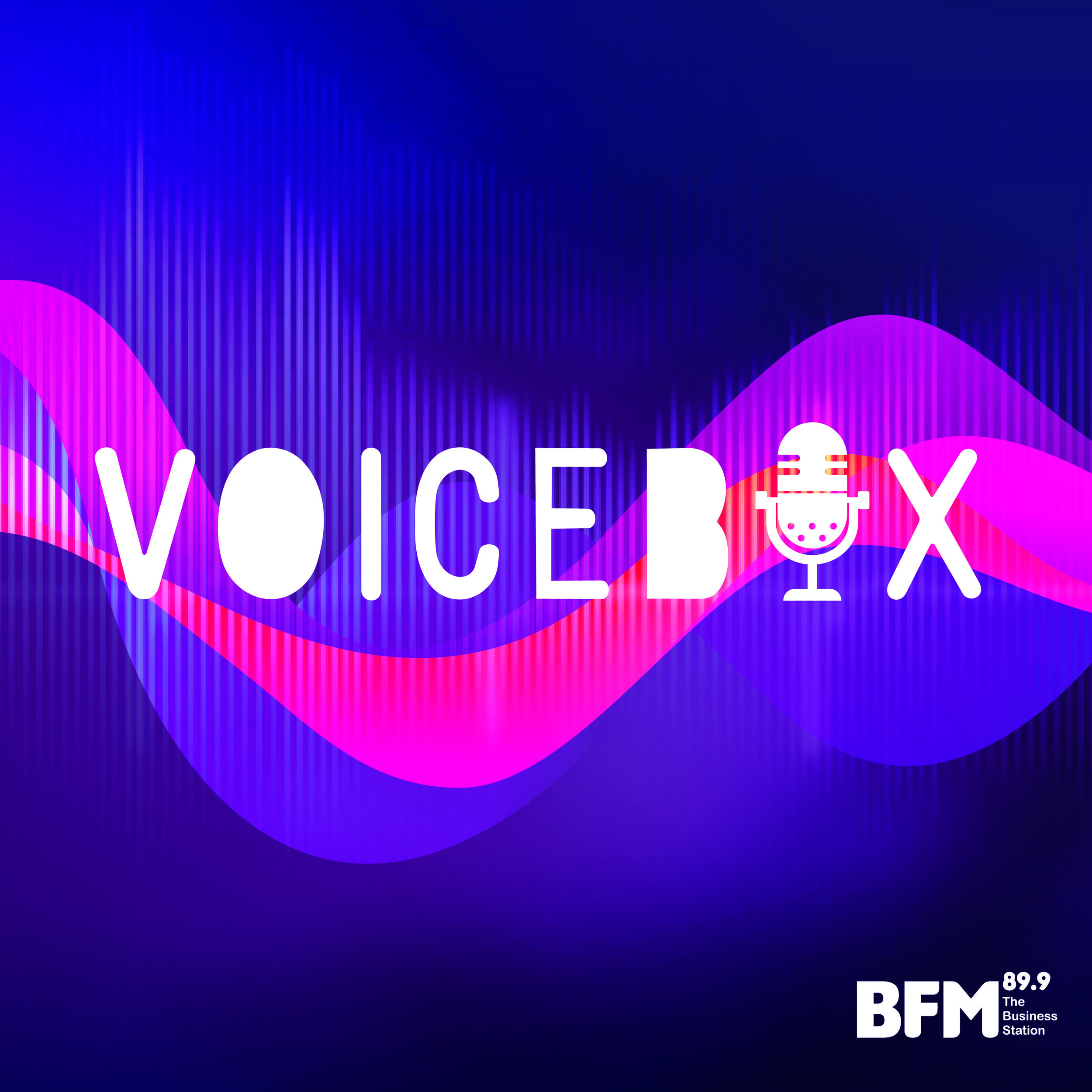 Voicebox-07.jpg