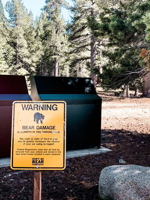 ashowens-best-yosemite-travel-guide-bears-warning-2019.png