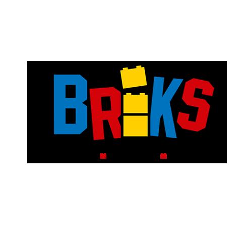 newbricks-1.png