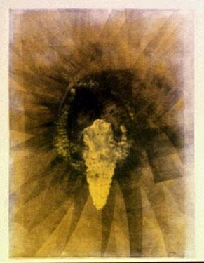 Yellowhole