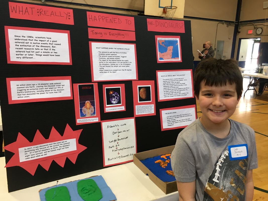 What is a science fair? -