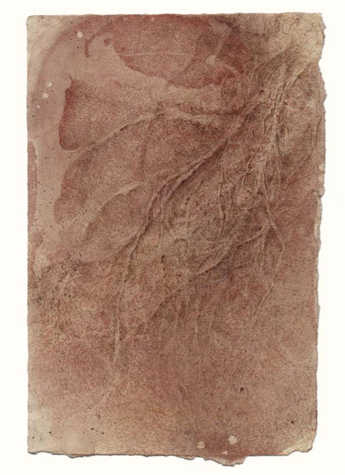 Spinal nerve landscape (#3) ,    11 x 7.75 in.     $3,200