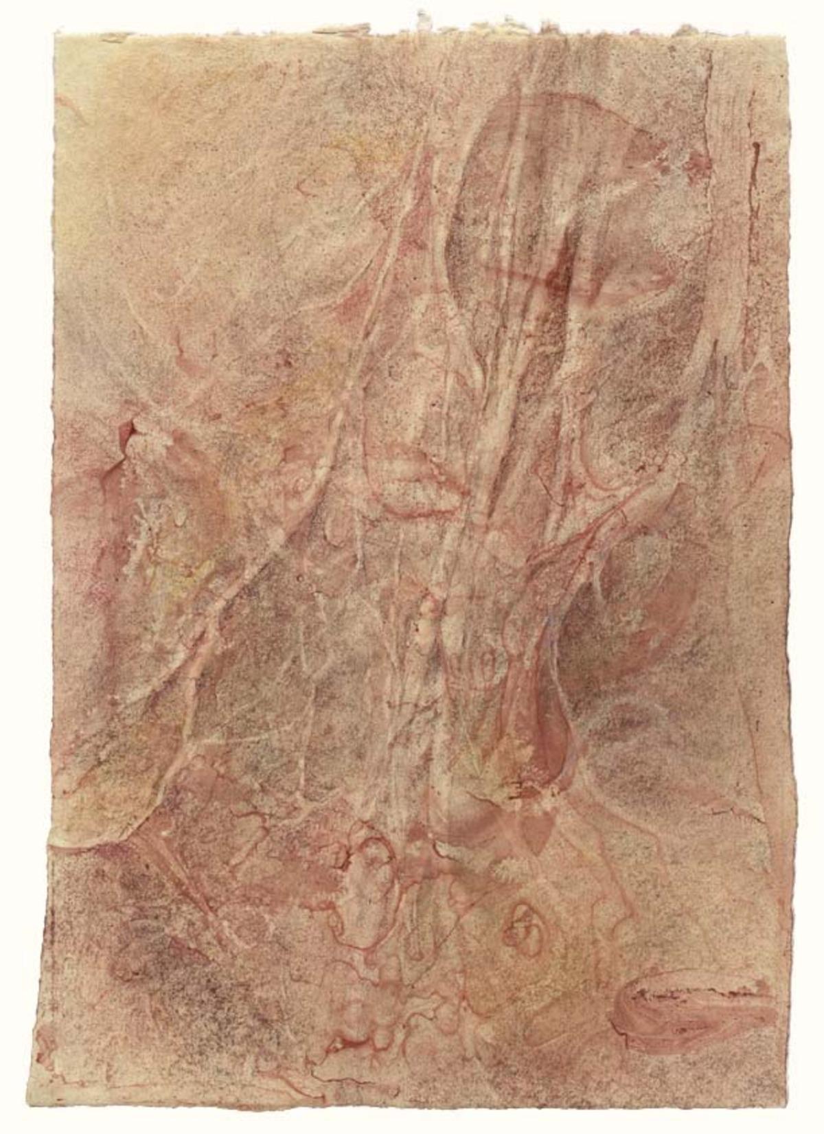 Spinal nerve landscape (#1), 11 x 7.75 in. $3,200