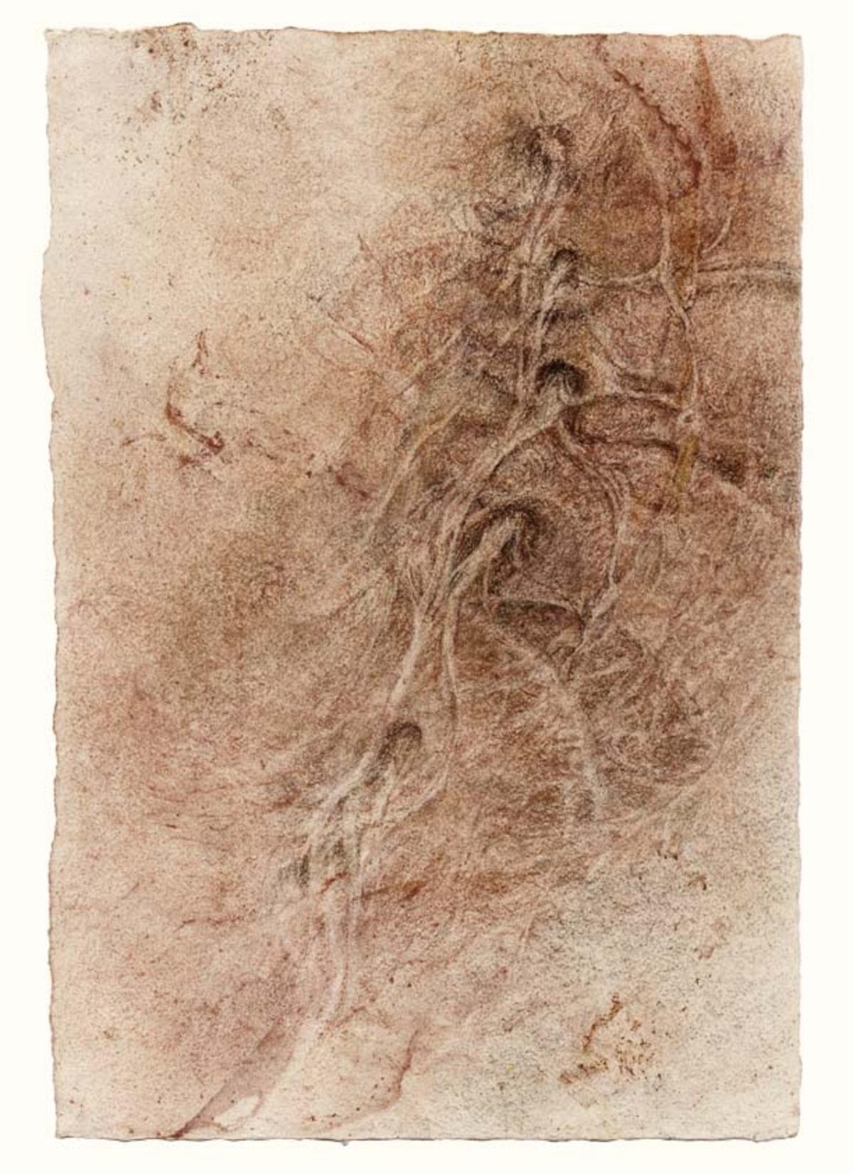 Lumbar vertebrae (L3-4-5) with emerging nerves ,    11 x 7.5 in.     $3,200