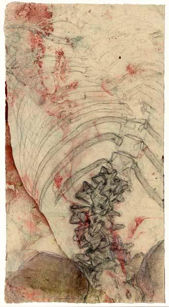 spine_scroll-wb10.jpg