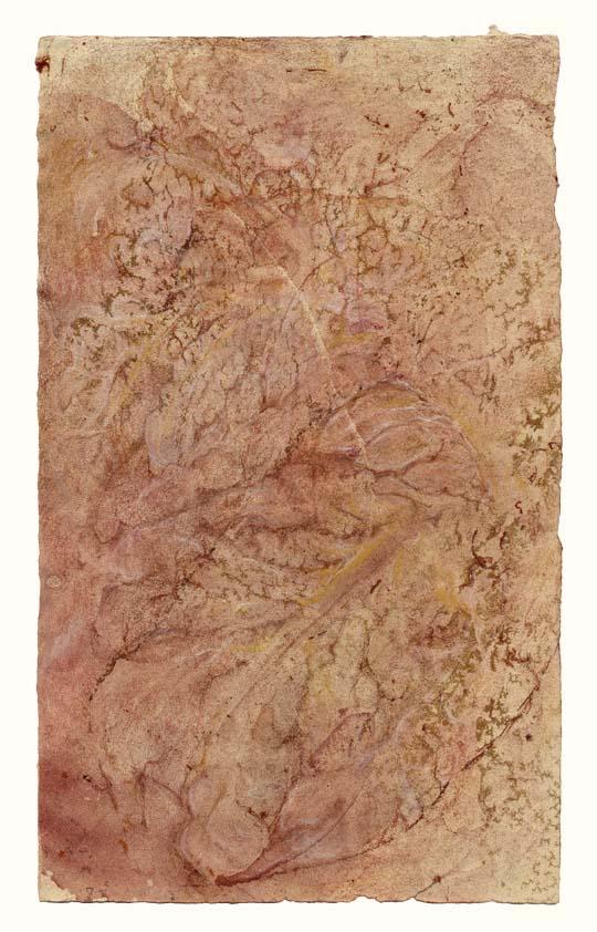 Arbor vitae (mauve crystalline)