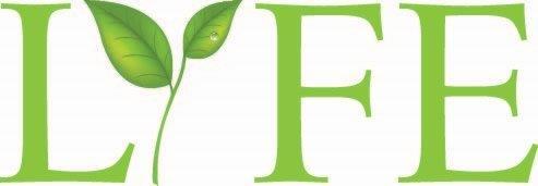 logo-web (2).jpg