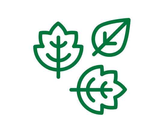 Green_Leaves1.png