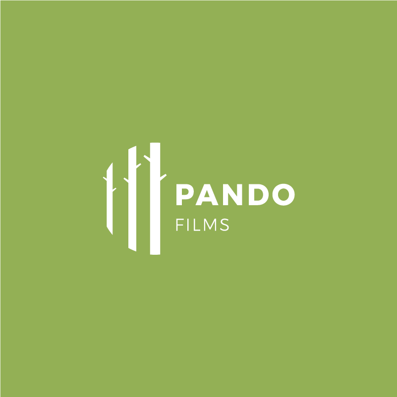 - Pando / Film company