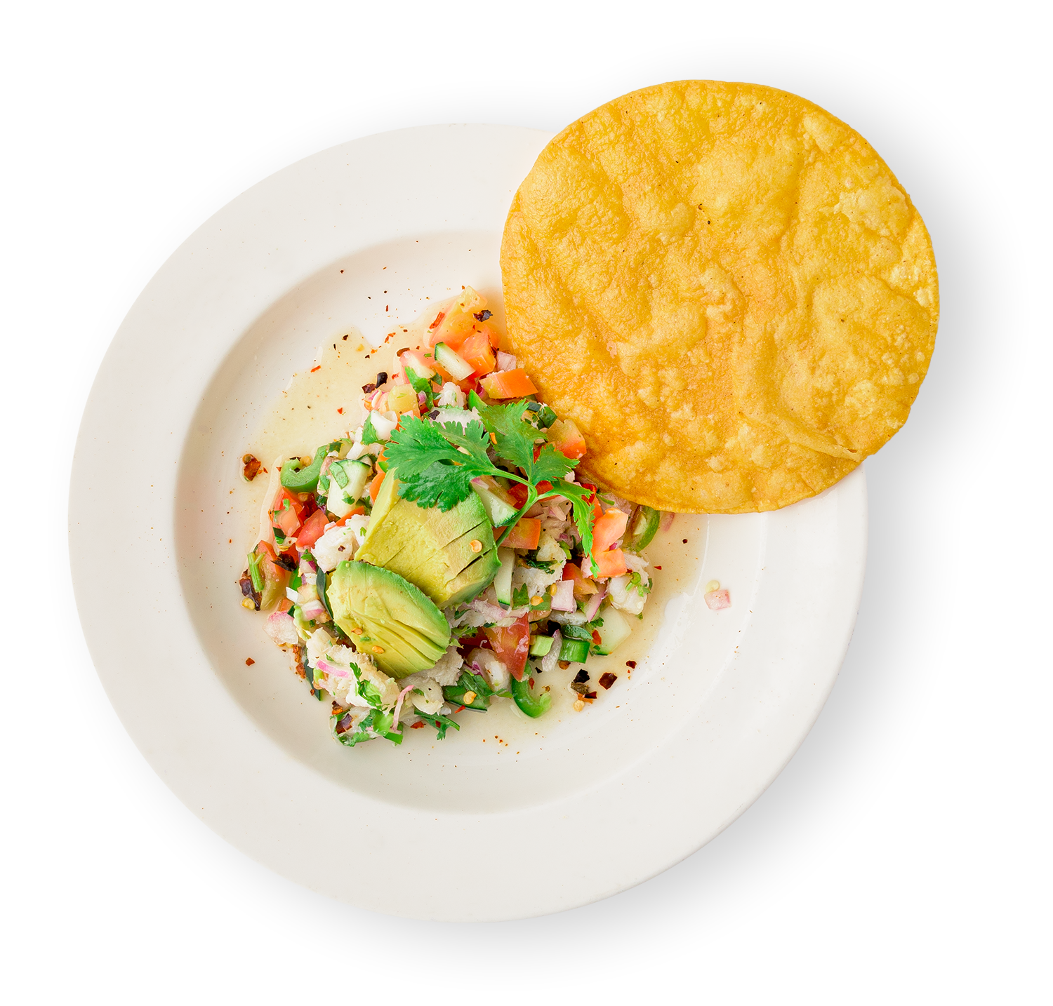 ceviche-topview.png
