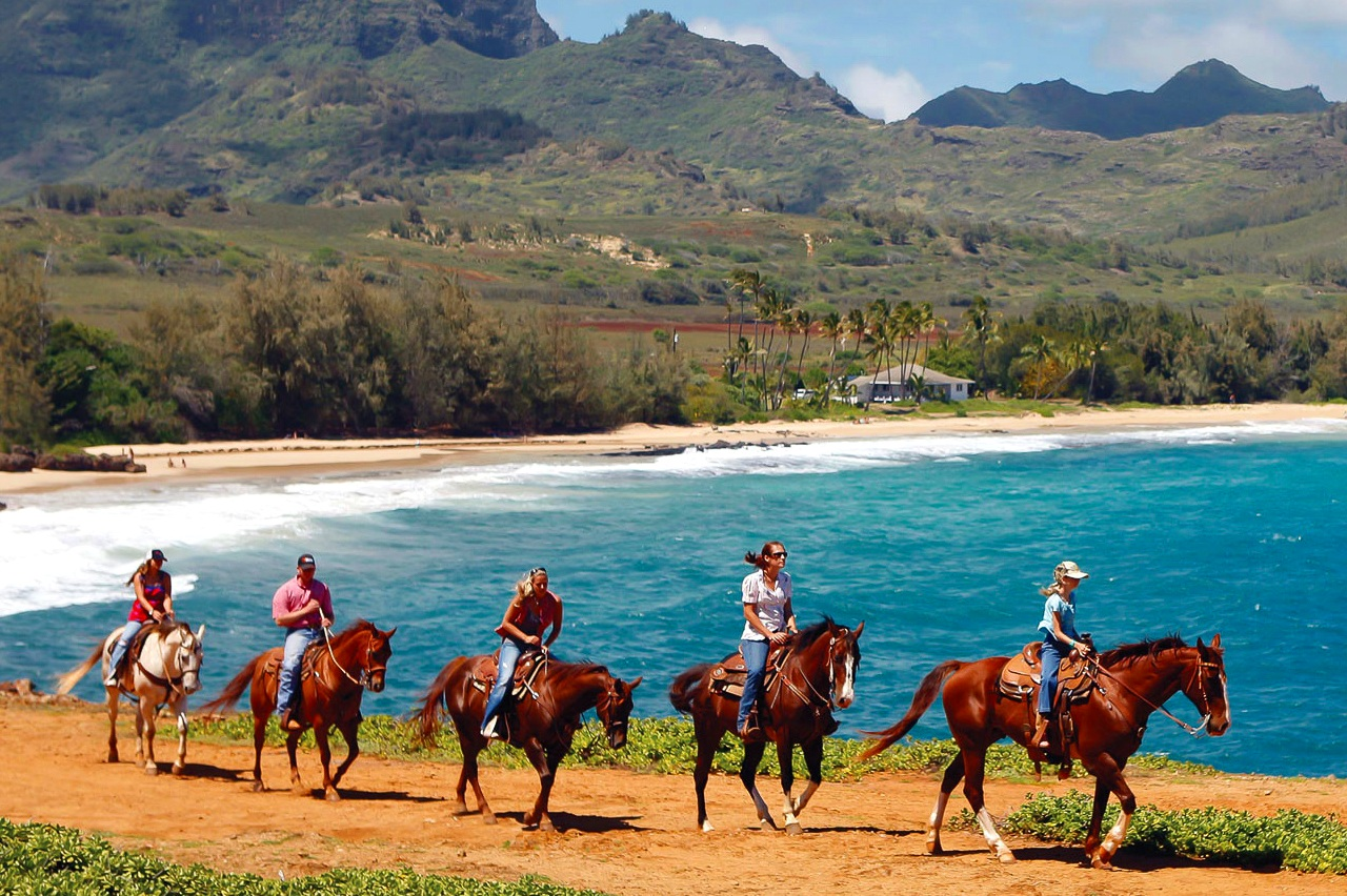 HORSEBACK RIDING - Saddle up and enjoy a horseback riding tour across Kauai's peaceful ranch lands and pastures featuring stunning mountain and ocean views. Kauai horseback riding tours are fun no matter if you are a beginner or expert. Princeville Ranch on Kauai's north shore offers both private and group horseback riding tours.Princeville Ranch Adventures - Private GuidePrinceville Ranch Adventures - PanioloPrinceville Ranch Adventures - Waterfall Picnic