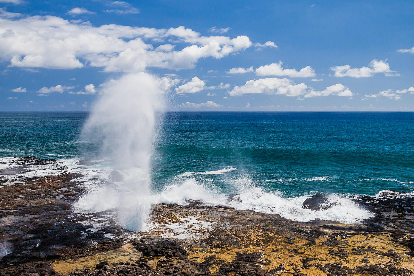 SPOUTING HORN - Spouting Horn is located in the Koloa district on the southern coast of Kauai. This area of Kauai is known for its crashing waves. These waves erode lava rocks on the coastline which can create narrow openings, as is the case with Spouting Horn.