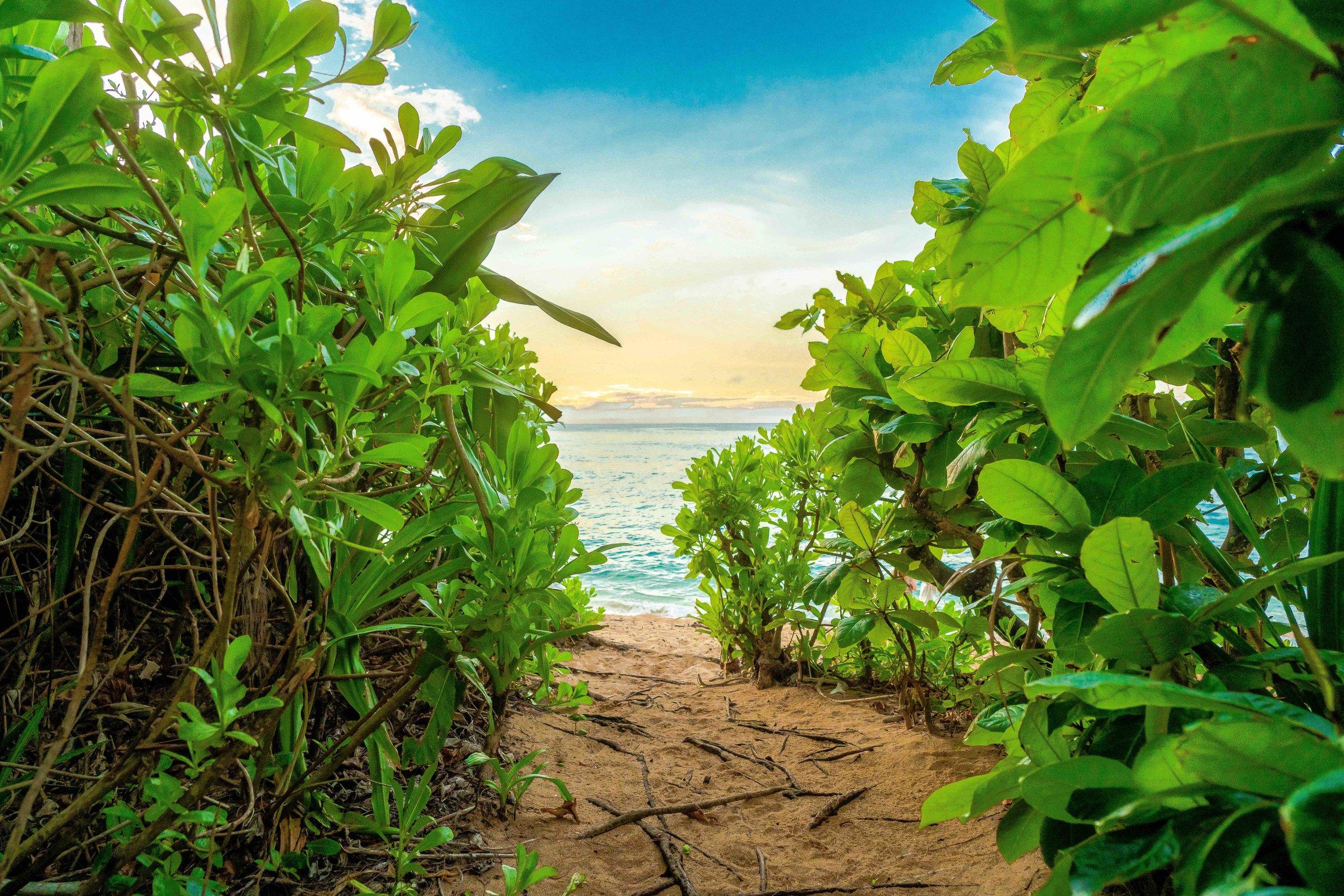 Kauai Beach Rental