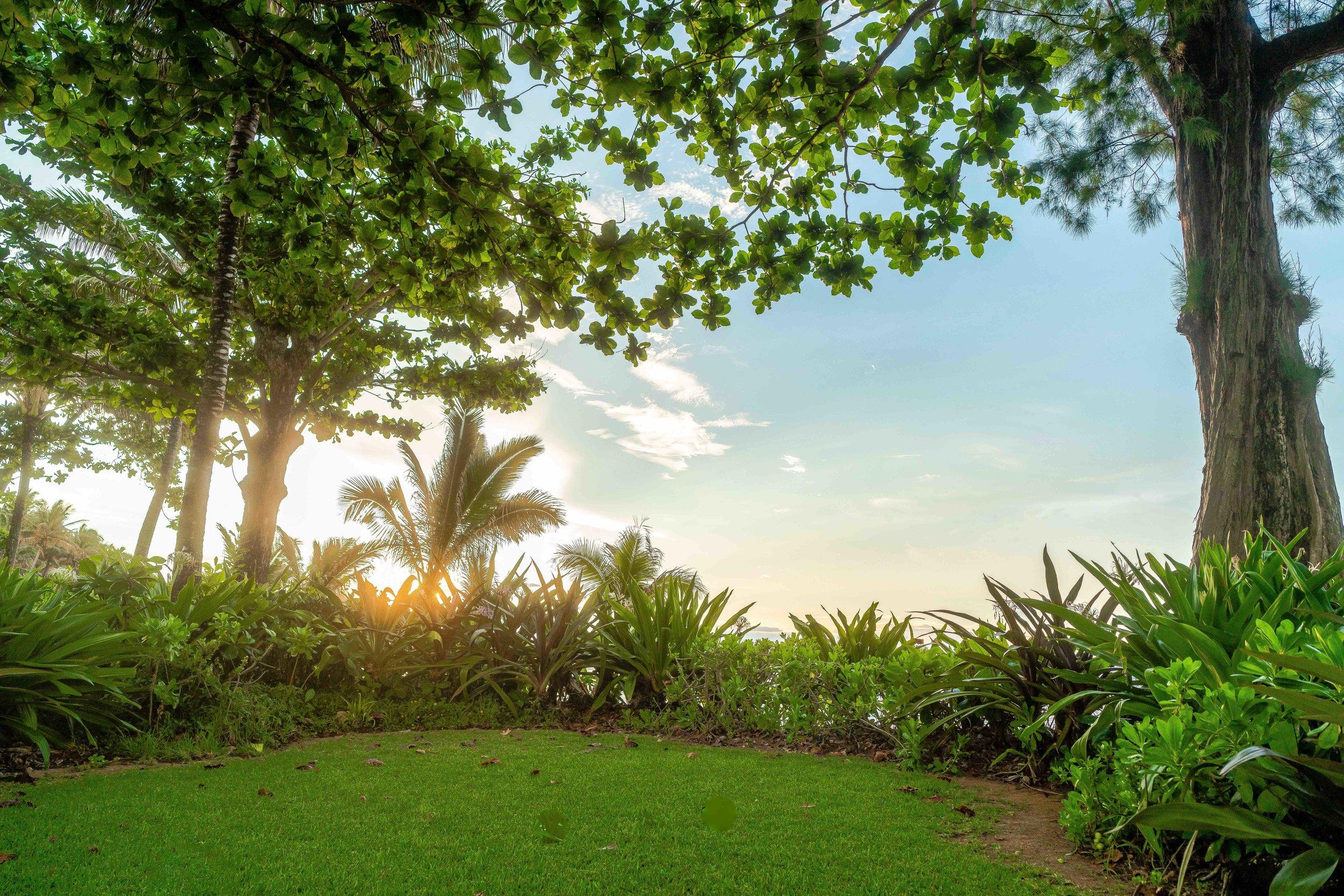 Beachfront Rental Kauai
